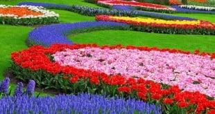 Прекрасни градини