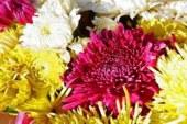 Как да запазим цветята свежи