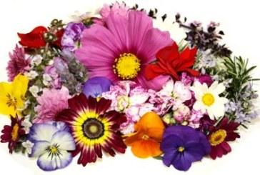 Флористите в България вече с Асоциация