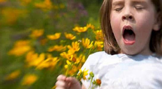 Цветята като източник на алергии