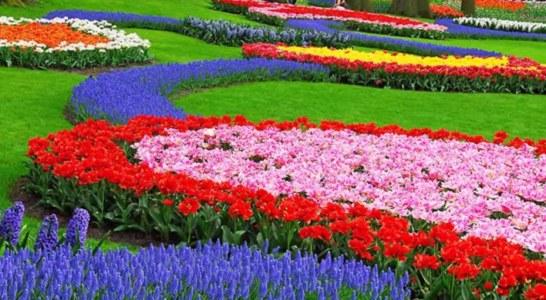 Прекрасни градини от света