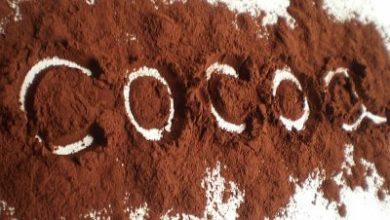 Photo of Какаото лекува високо кръвно