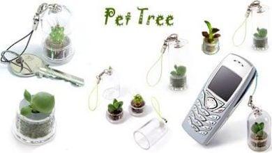 Photo of Pet tree е изключително подходящ подарък за вас или любимите ви хора