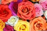 Цветя и годишнини