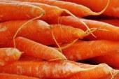 Морков