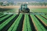 Международен ден за борба с пестицидите